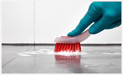 tile and grout cleaning image